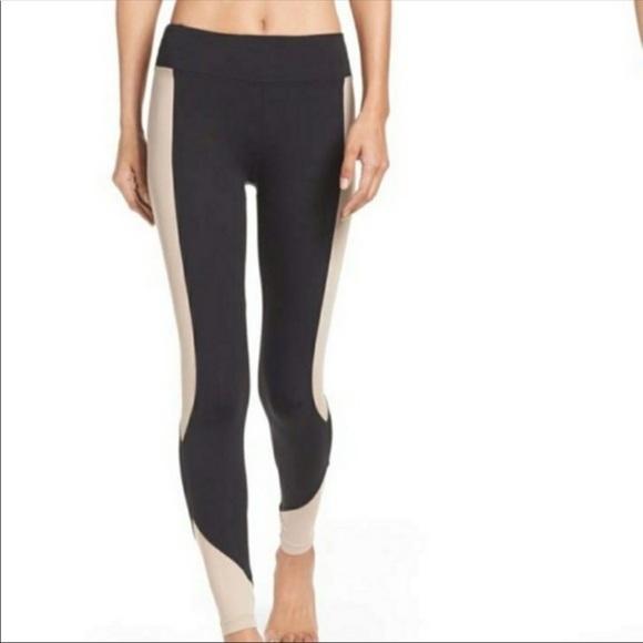 Koral Pants - Koral Activewear Curve Huger Leggings